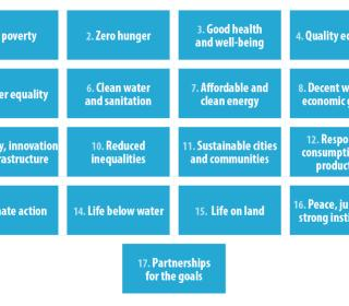 Text of the 17 UN Sustainable Development Goals, each in a separate square