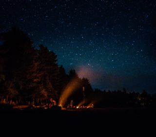 A group surrounds a large night time campfire, surrounded by trees and stars.