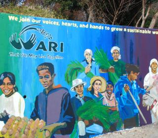 "A colourful mural at the Asian Rural Institute depicting its motto ""That we may live together."""