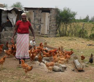 Farmer Rose Muthoni stands, smiling near her chickens on her small farm in Kenya. She has about 25 brown chickens. There are a couple of small shelters in the background.