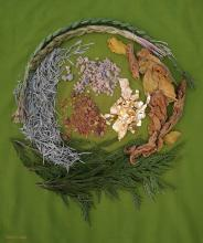 A beautiful photo of sacred medicines from both the Near East and Indigenous traditions laid out in a circle on a green cloth background..