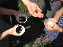 A group of campers at the Vacation Bible School hold a bunch of snails and slugs.