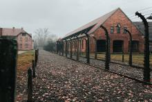 A photo of the brick buildings of Auschwitz concentration camp in Poland, surrounded by high barbed wire fencing.