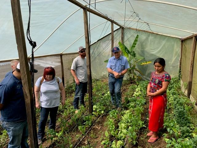 A young woman in the traditional dress of the women of Nebaj, Guatemala, shows a group of visitors the garden where she has applied new agricultural skills.