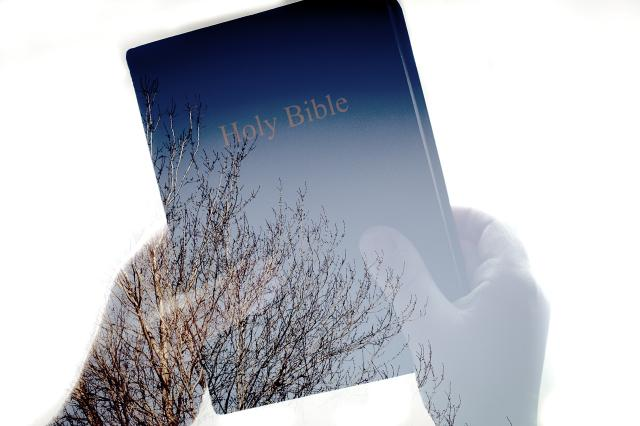 Transparent closeup of hands holding Bible with trees showing through