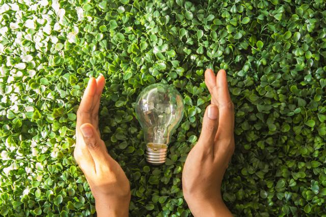 Light bulb and hand with grassy background