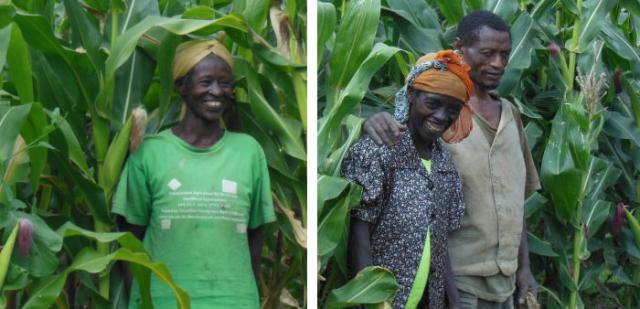 A diptych showing portraits of two women farmers in Ethiopia, both middle-aged Black women, standing in their fields against the brilliant green of corn stalks, smiling, with their hair tied in scarfs. One of the women appears with her husband.